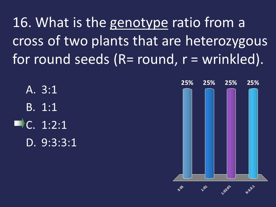 16. What is the genotype ratio from a cross of two plants that are heterozygous for round seeds (R= round, r = wrinkled). A.3:1 B.1:1 C.1:2:1 D.9:3:3: