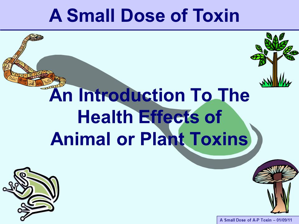 A Small Dose of A-P Toxin – 01/09/11 An Introduction To The Health Effects of Animal or Plant Toxins A Small Dose of Toxin