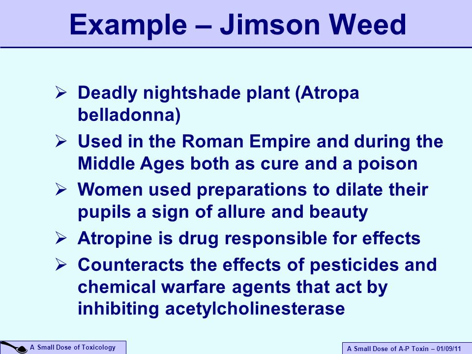A Small Dose of A-P Toxin – 01/09/11 A Small Dose of Toxicology  Deadly nightshade plant (Atropa belladonna)  Used in the Roman Empire and during the Middle Ages both as cure and a poison  Women used preparations to dilate their pupils a sign of allure and beauty  Atropine is drug responsible for effects  Counteracts the effects of pesticides and chemical warfare agents that act by inhibiting acetylcholinesterase Example – Jimson Weed