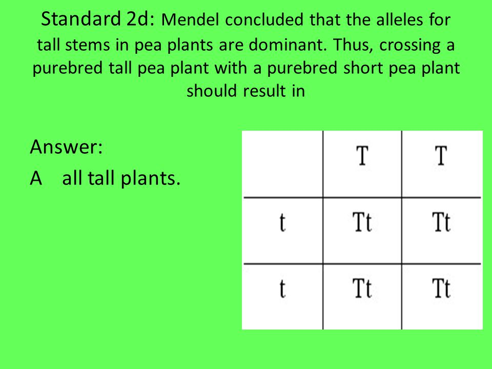 Standard 2d: In the Punnett Square below, what percentage of the offspring will have purple flowers.