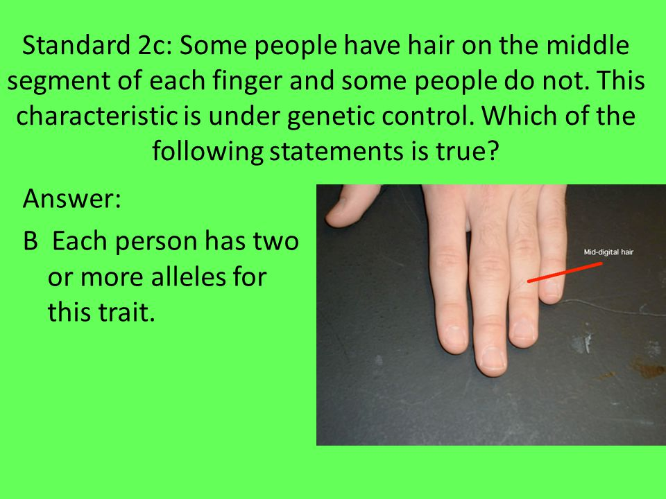 Standard 2c: Some people have hair on the middle segment of each finger and some people do not.