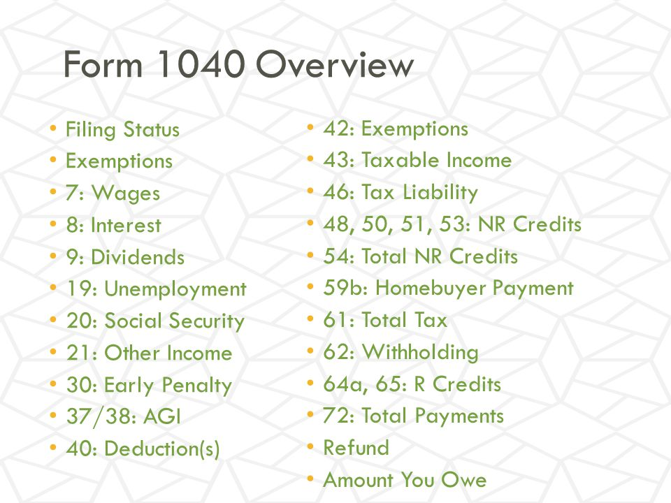 Form 1040 Overview Filing Status Exemptions 7: Wages 8: Interest 9: Dividends 19: Unemployment 20: Social Security 21: Other Income 30: Early Penalty 37/38: AGI 40: Deduction(s) 42: Exemptions 43: Taxable Income 46: Tax Liability 48, 50, 51, 53: NR Credits 54: Total NR Credits 59b: Homebuyer Payment 61: Total Tax 62: Withholding 64a, 65: R Credits 72: Total Payments Refund Amount You Owe