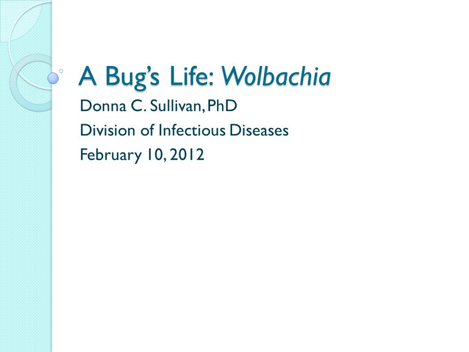 A Bug's Life: Wolbachia Donna C. Sullivan, PhD Division of Infectious Diseases February 10, 2012