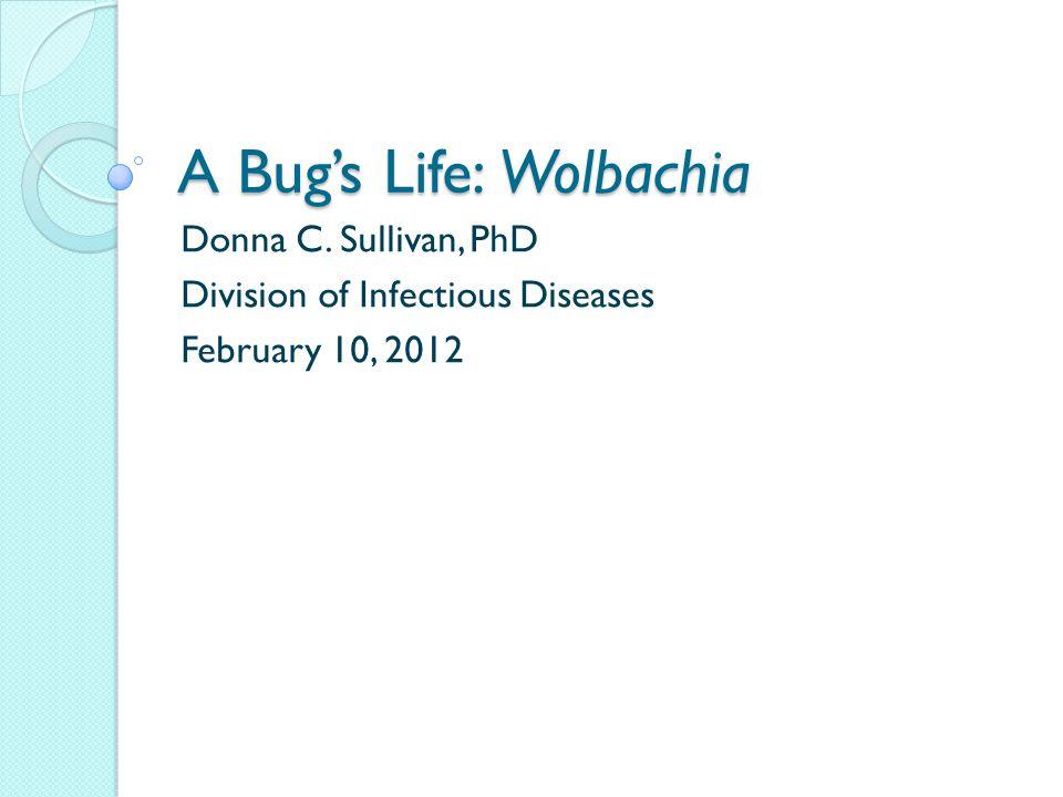 Lancet 2005; 365: 2116–21