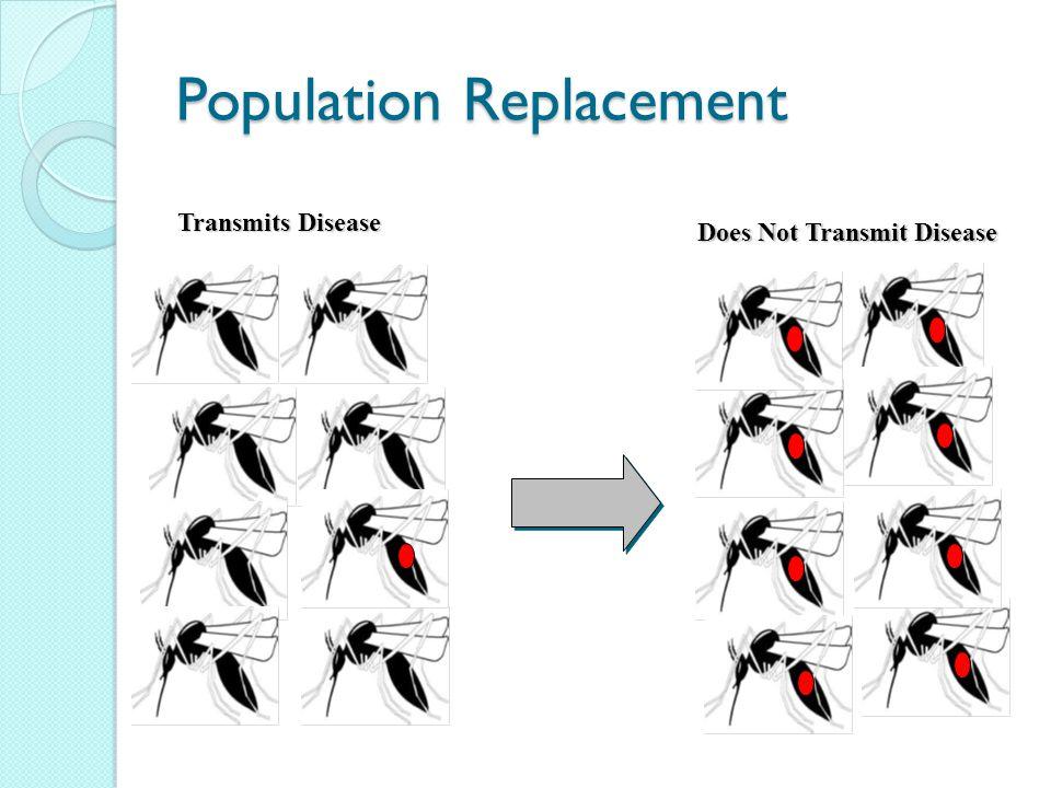 Population Replacement Transmits Disease Does Not Transmit Disease