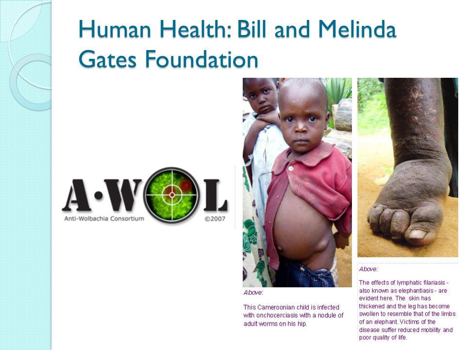 Human Health: Bill and Melinda Gates Foundation