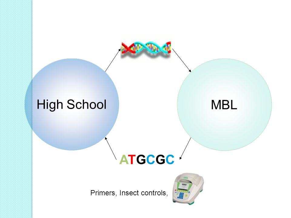 MBL High School ATGCGCATGCGC Primers, Insect controls,