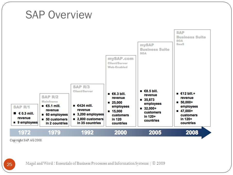SAP Overview Magal and Word .