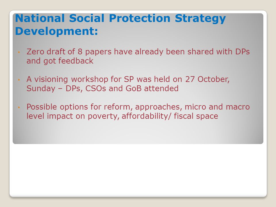 National Social Protection Strategy Development: Zero draft of 8 papers have already been shared with DPs and got feedback A visioning workshop for SP was held on 27 October, Sunday – DPs, CSOs and GoB attended Possible options for reform, approaches, micro and macro level impact on poverty, affordability/ fiscal space