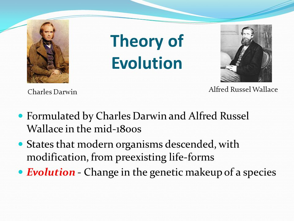 Theory of Evolution Formulated by Charles Darwin and Alfred Russel Wallace in the mid-1800s States that modern organisms descended, with modification,