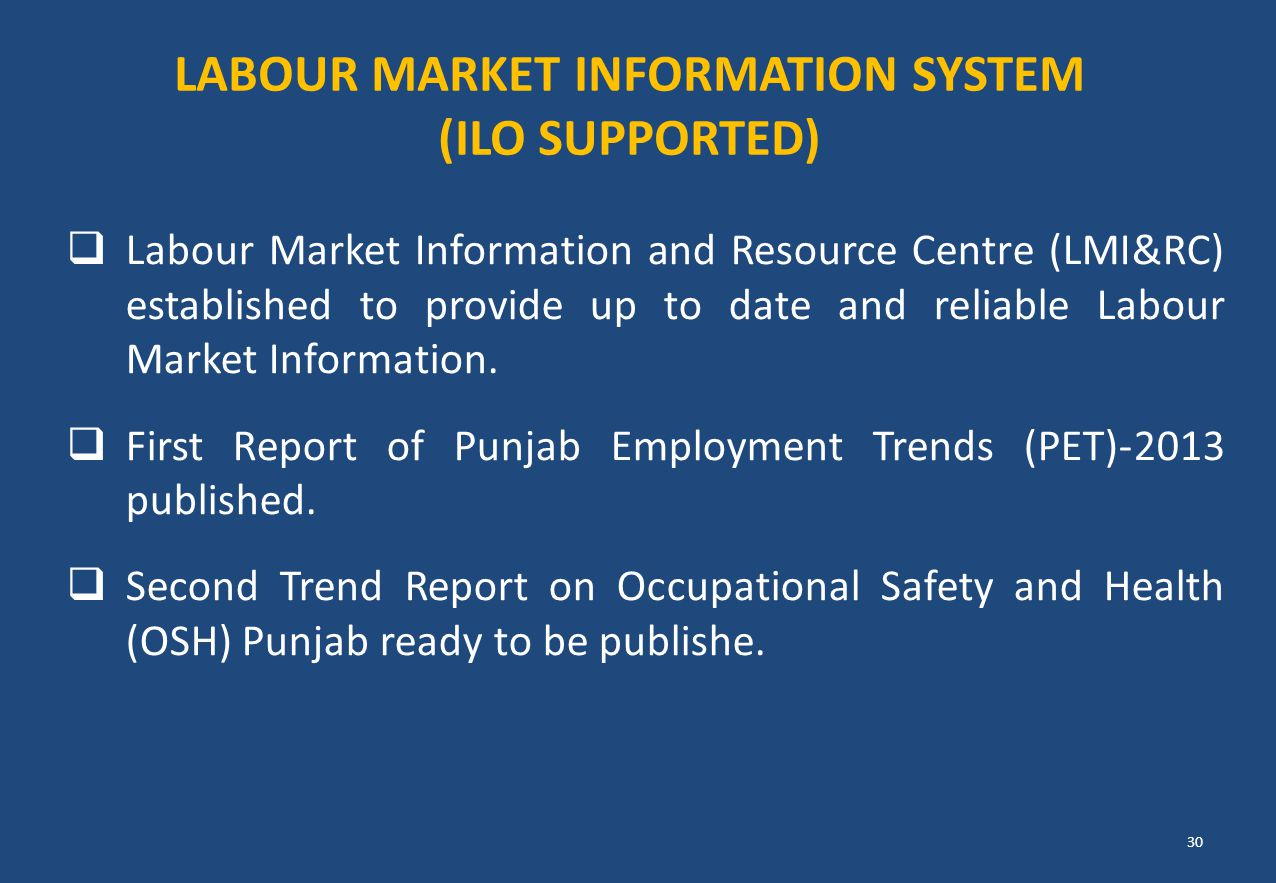  Labour Market Information and Resource Centre (LMI&RC) established to provide up to date and reliable Labour Market Information.  First Report of P