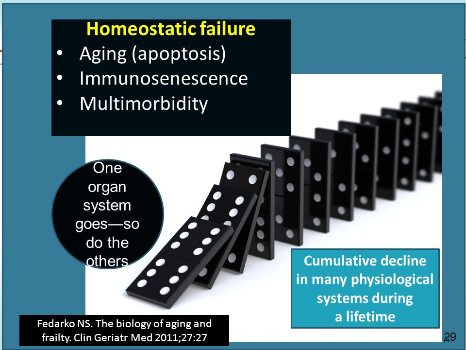 29 Homeostatic failure Aging (apoptosis) Immunosenescence Multimorbidity One organ system goes—so do the others Cumulative decline in many physiological systems during a lifetime Fedarko NS.