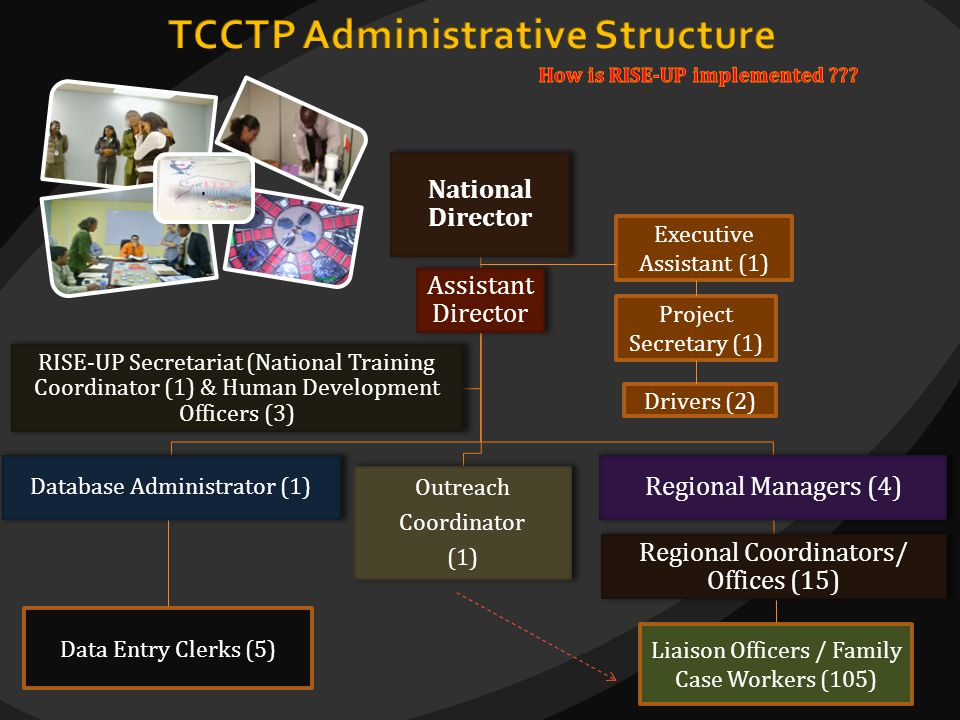 National Director Assistant Director Database Administrator (1) Outreach Coordinator (1) Regional Managers (4) Regional Coordinators/ Offices (15) RIS
