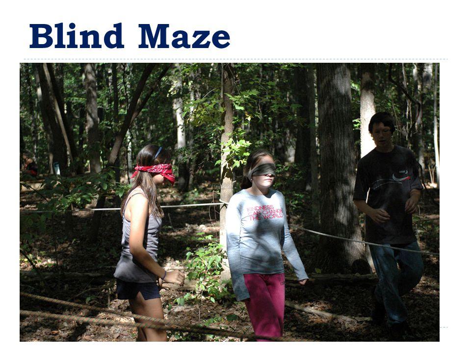Blind Maze
