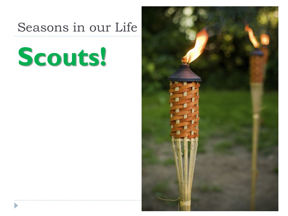 Seasons in our Life Scouts!