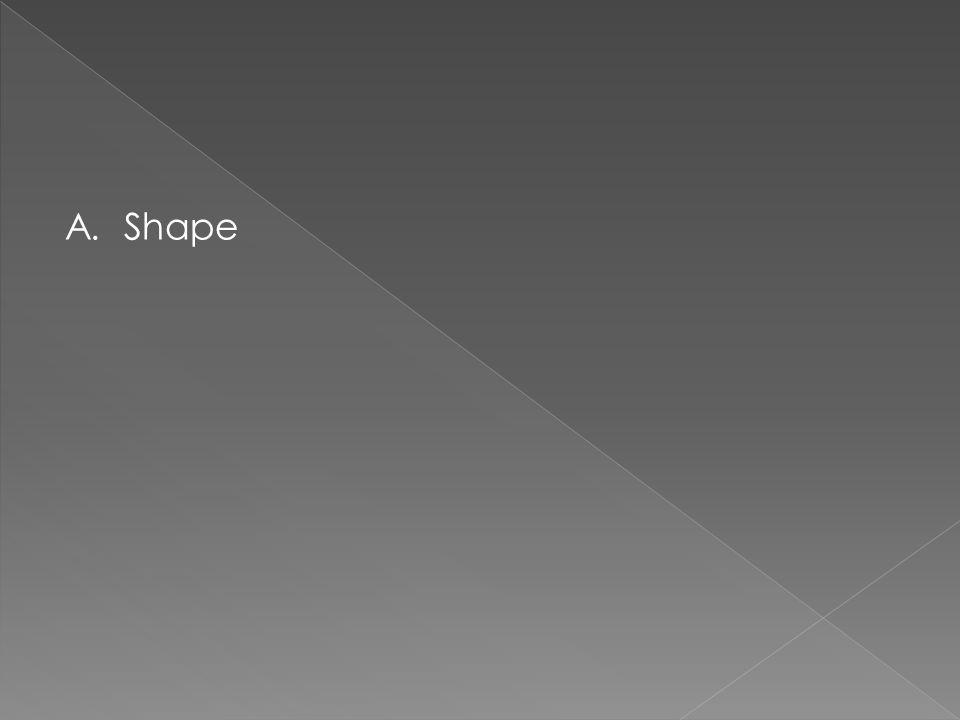A. Shape