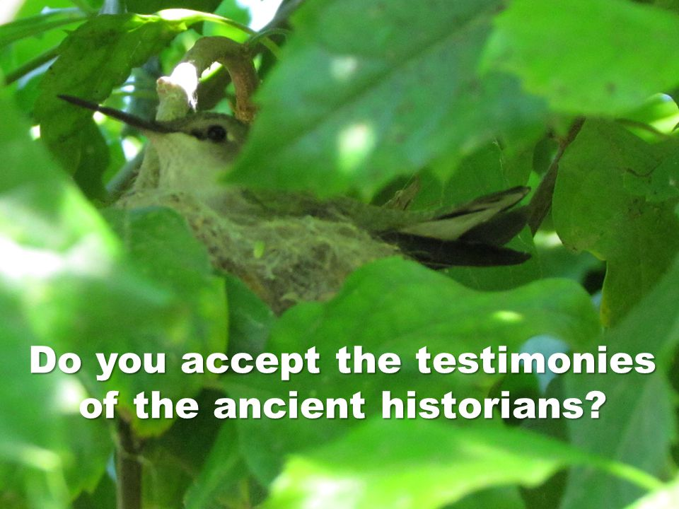 Do you accept the testimonies of the ancient historians