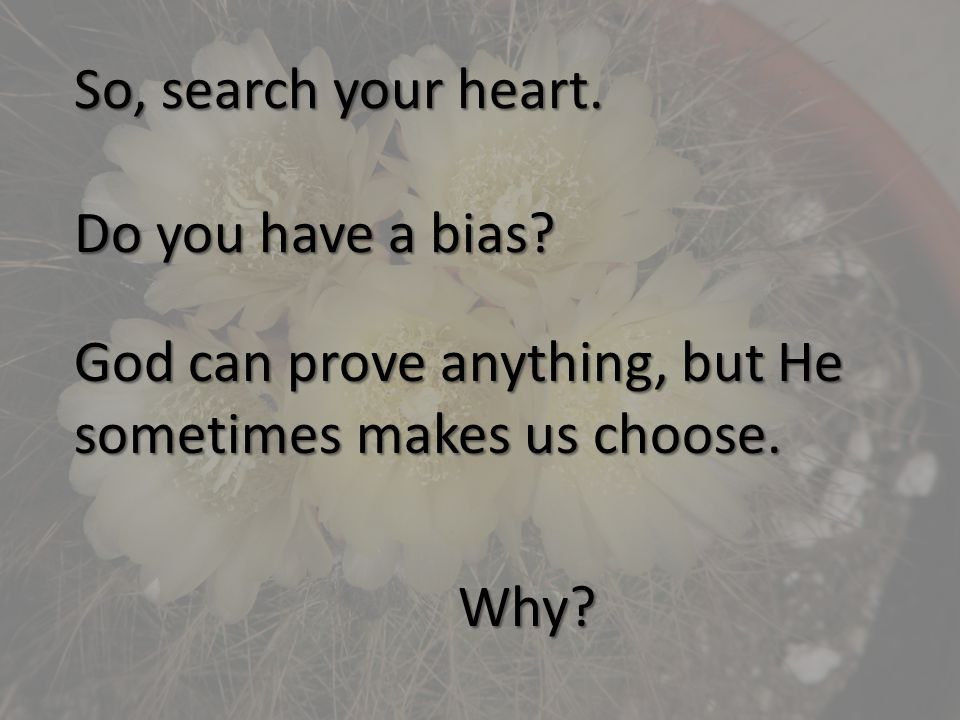So, search your heart. Do you have a bias.