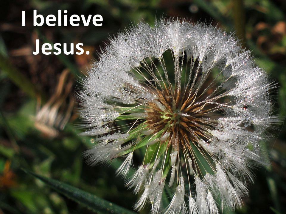 I believe Jesus.