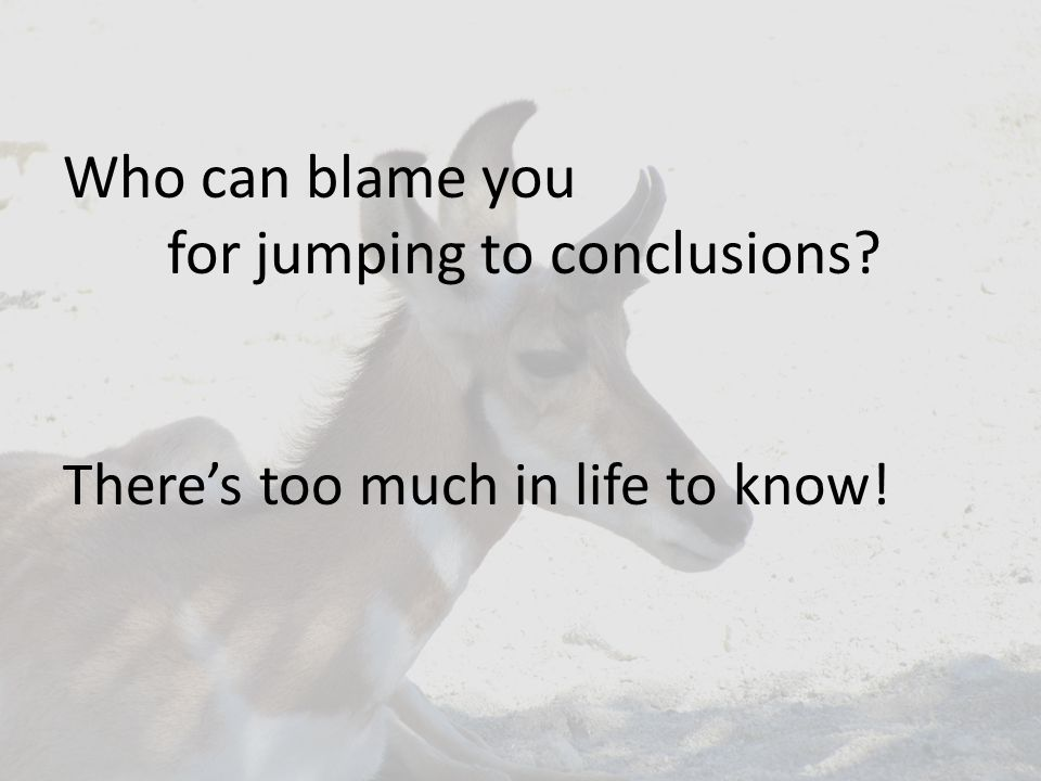 Who can blame you for jumping to conclusions There's too much in life to know!