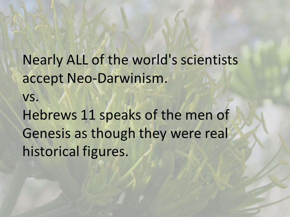 Nearly ALL of the world s scientists accept Neo-Darwinism.