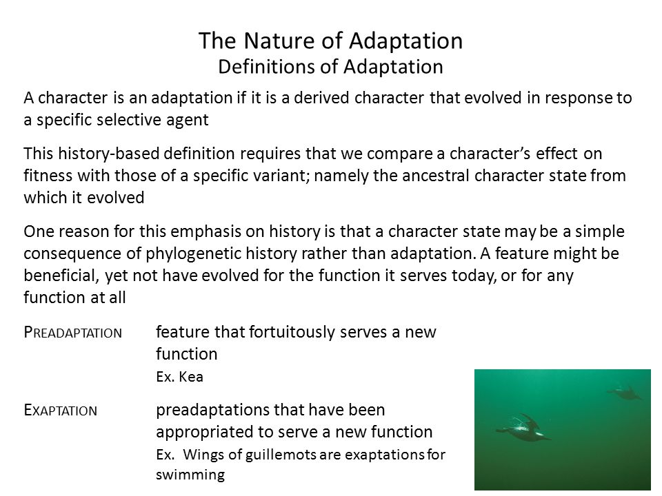 The Nature of Adaptation Definitions of Adaptation A character is an adaptation if it is a derived character that evolved in response to a specific selective agent This history-based definition requires that we compare a character's effect on fitness with those of a specific variant; namely the ancestral character state from which it evolved One reason for this emphasis on history is that a character state may be a simple consequence of phylogenetic history rather than adaptation.