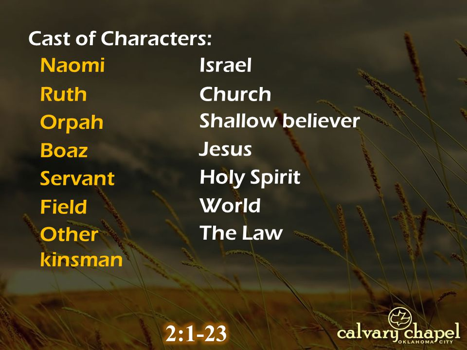 Naomi Ruth Orpah Israel Church Shallow believer Boaz Jesus Other kinsman The Law Cast of Characters: Servant Holy Spirit Field World