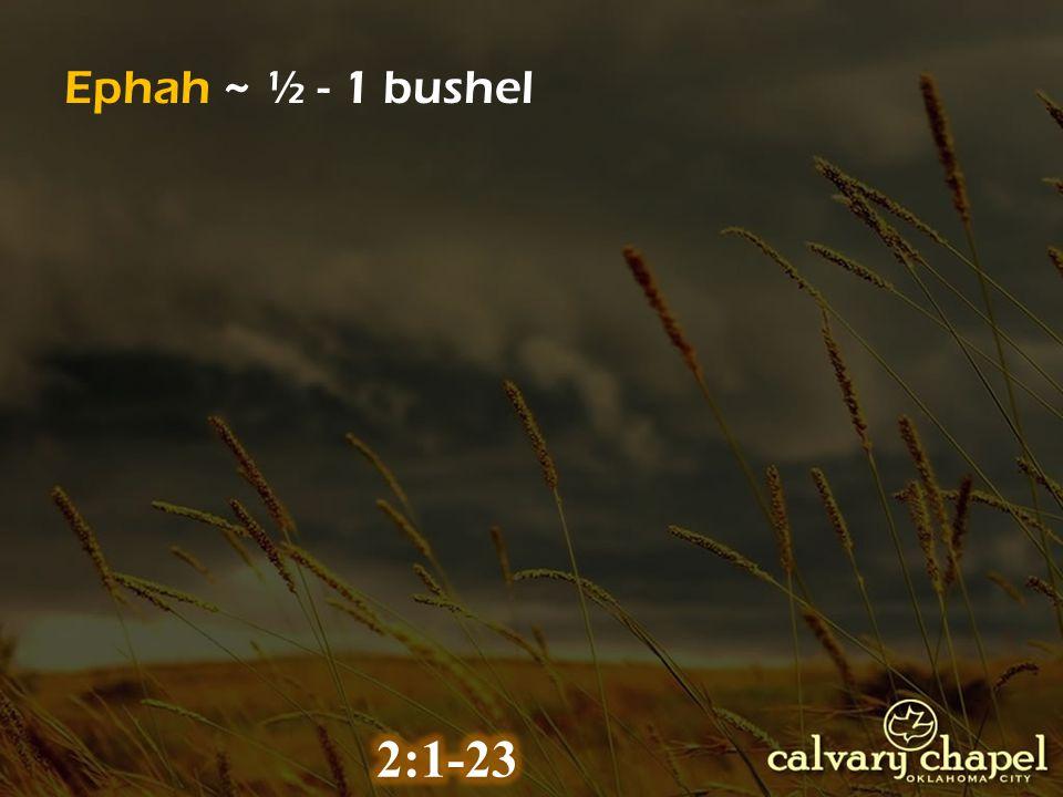 Ephah ~ ½ - 1 bushel