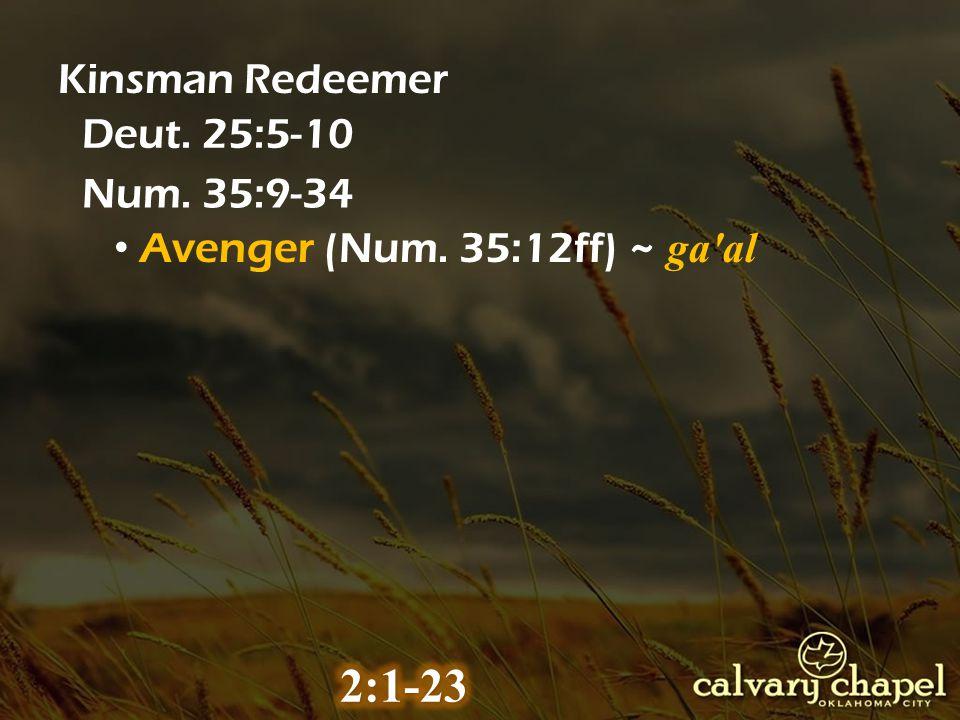Kinsman Redeemer Deut. 25:5-10 Num. 35:9-34 Avenger (Num. 35:12ff) ~ ga al