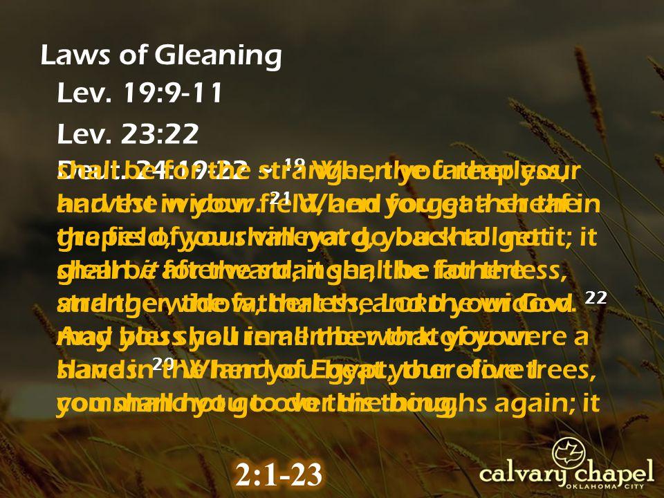 Laws of Gleaning Lev. 19:9-11 Lev. 23:22 Deut.