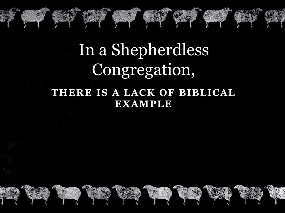 THERE IS A LACK OF BIBLICAL EXAMPLE In a Shepherdless Congregation,