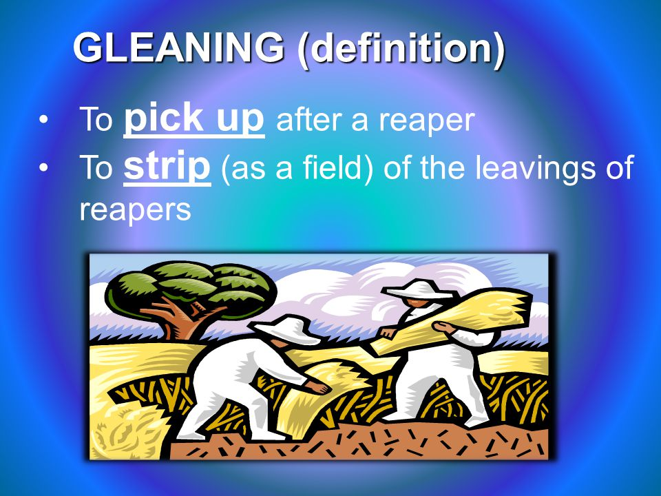 GLEANING (definition) To pick up after a reaper To strip (as a field) of the leavings of reapers