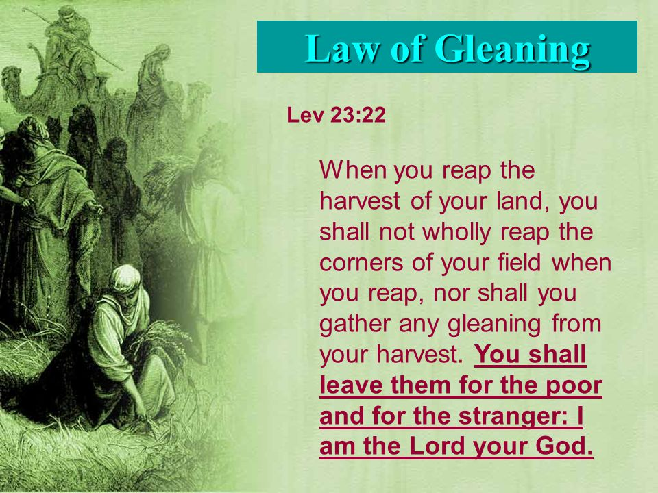 Lev 23:22 When you reap the harvest of your land, you shall not wholly reap the corners of your field when you reap, nor shall you gather any gleaning