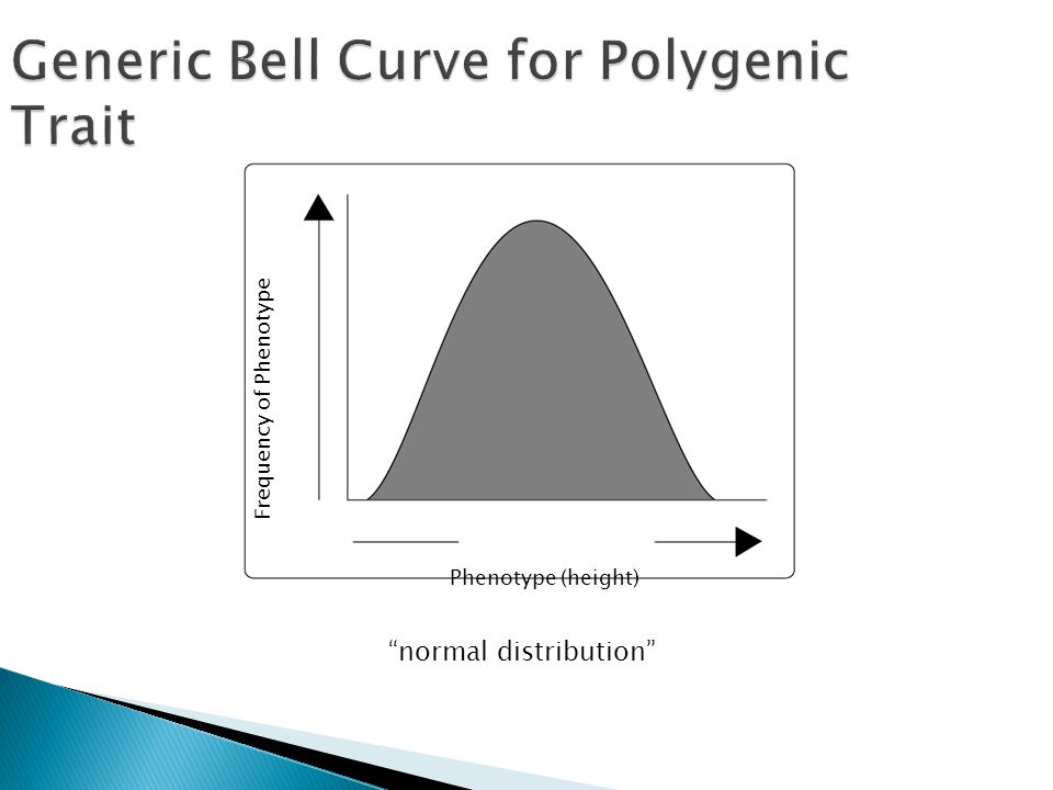 Frequency of Phenotype Phenotype (height) Generic Bell Curve for Polygenic Trait normal distribution