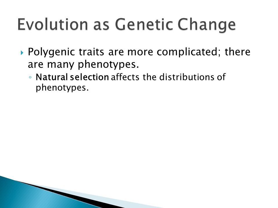  Polygenic traits are more complicated; there are many phenotypes.