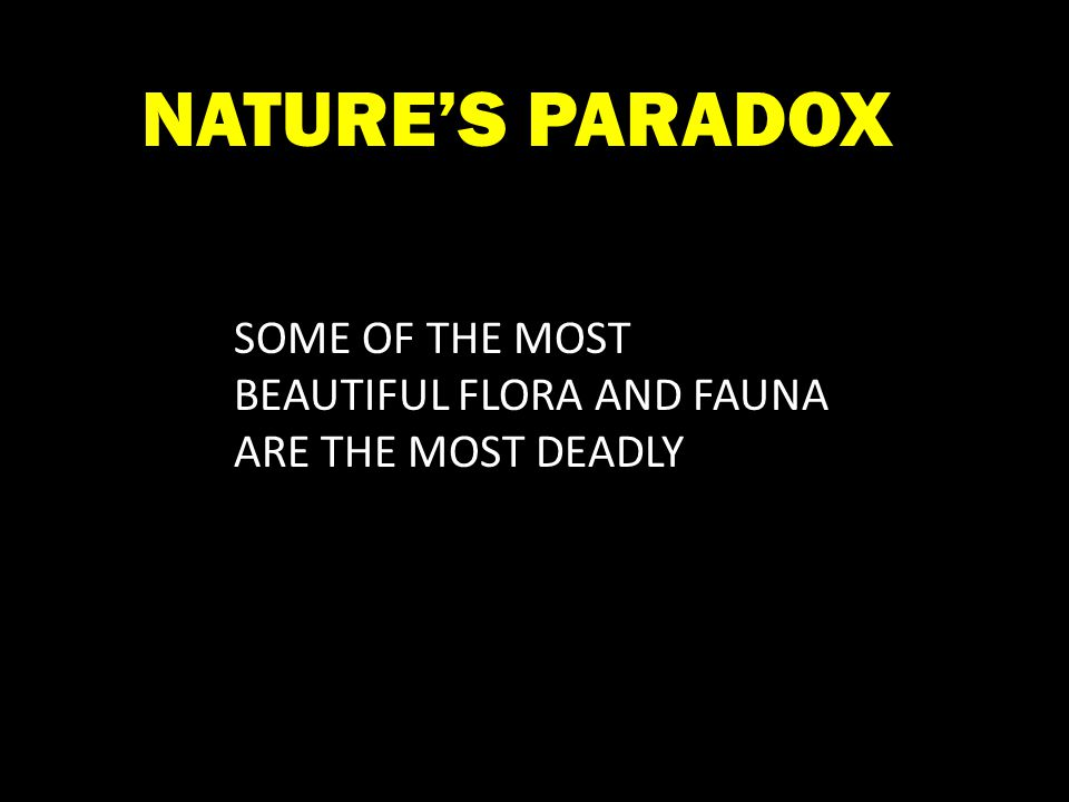 SOME OF THE MOST BEAUTIFUL FLORA AND FAUNA ARE THE MOST DEADLY NATURE'S PARADOX
