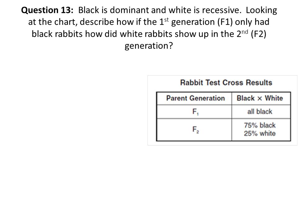 Question 13: Black is dominant and white is recessive.