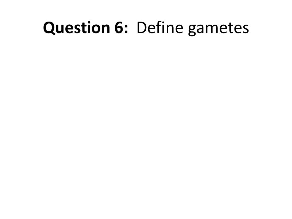 Question 6: Define gametes