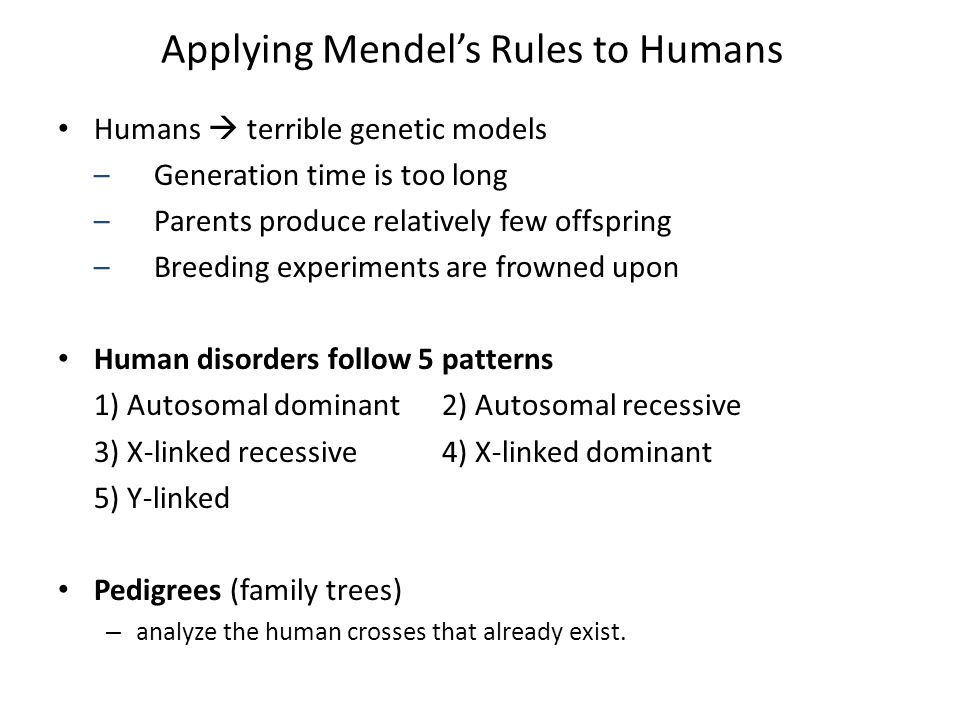 Applying Mendel's Rules to Humans Humans  terrible genetic models –Generation time is too long –Parents produce relatively few offspring –Breeding experiments are frowned upon Human disorders follow 5 patterns 1) Autosomal dominant2) Autosomal recessive 3) X-linked recessive4) X-linked dominant 5) Y-linked Pedigrees (family trees) – analyze the human crosses that already exist.