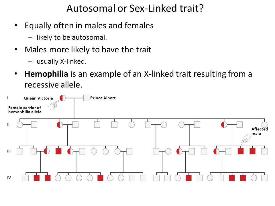 Autosomal or Sex-Linked trait.Equally often in males and females – likely to be autosomal.