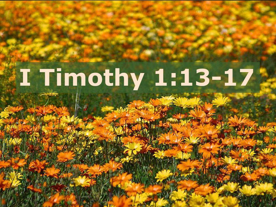 I Timothy 1:13-17