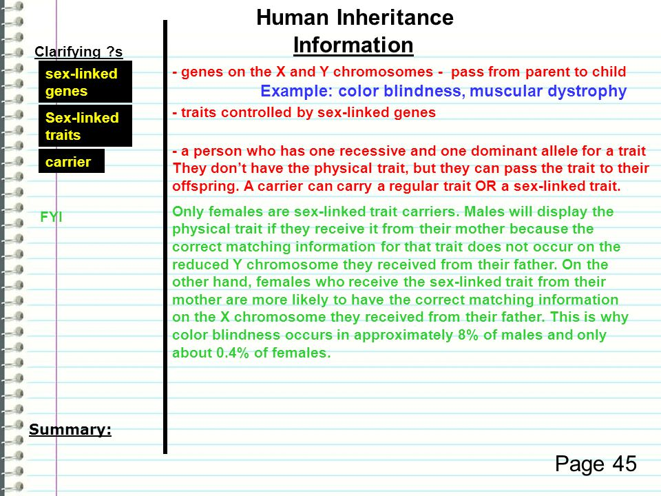 Page 44 Clarifying s Information Human Inheritance multiple alleles single gene How does environment affect genes.