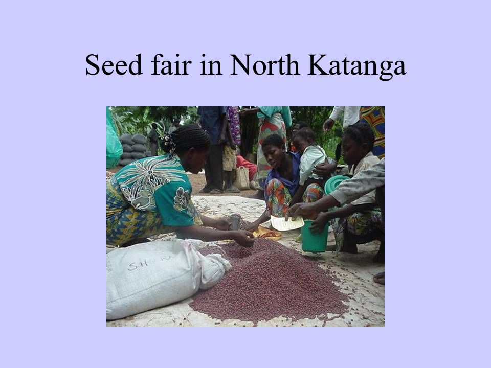 Seed fair in North Katanga