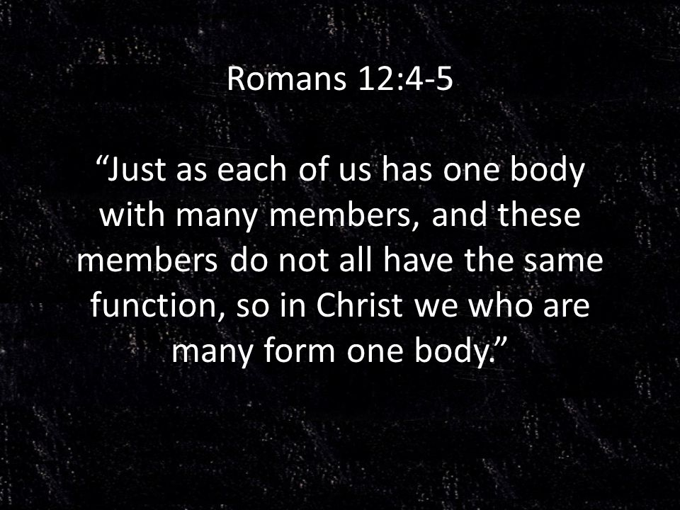 Romans 12:4-5 Just as each of us has one body with many members, and these members do not all have the same function, so in Christ we who are many form one body.