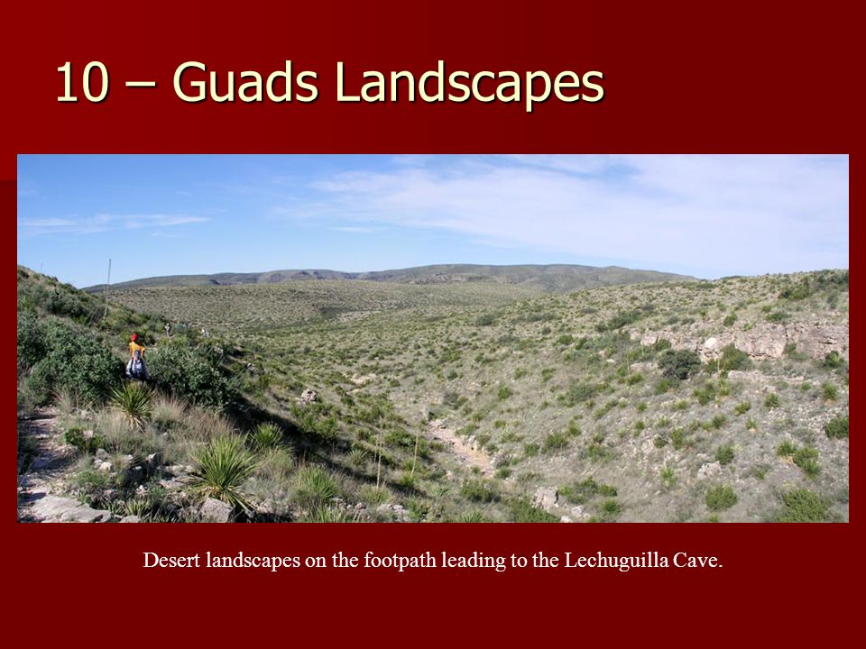 10 – Guads Landscapes Desert landscapes on the footpath leading to the Lechuguilla Cave.