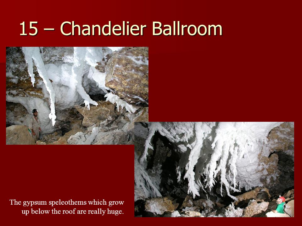 15 – Chandelier Ballroom The gypsum speleothems which grow up below the roof are really huge.