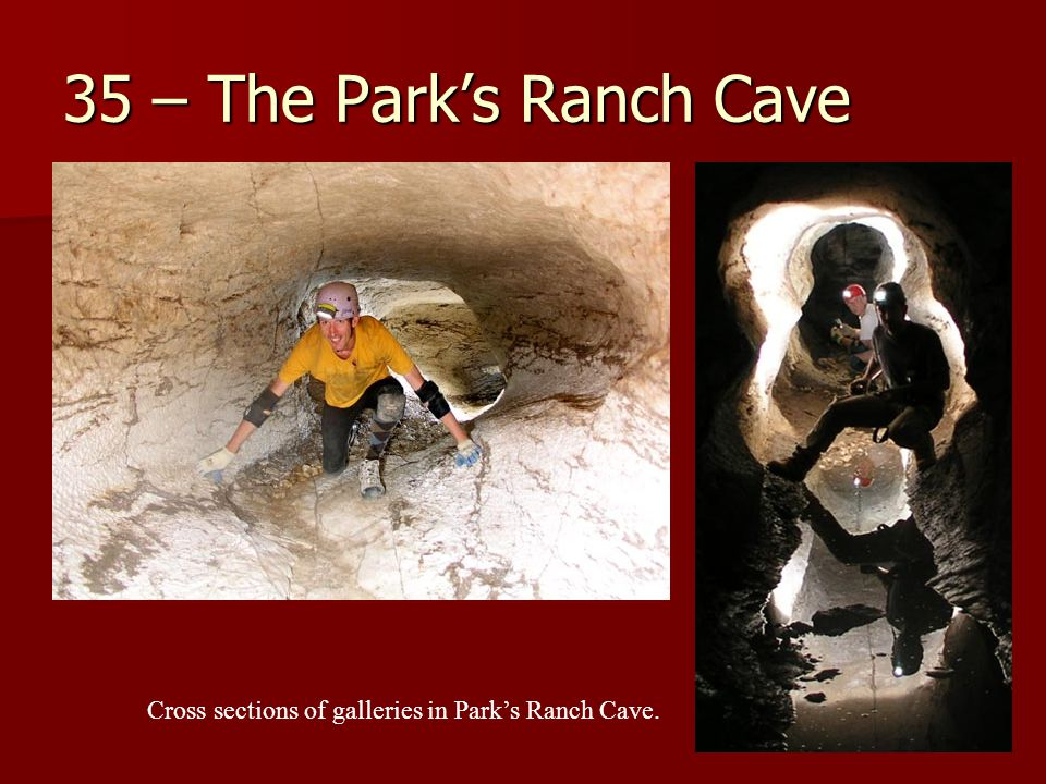 35 – The Park's Ranch Cave Cross sections of galleries in Park's Ranch Cave.