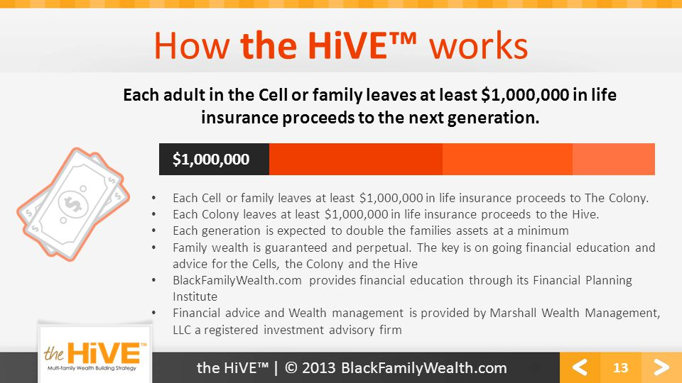How the HiVE™ works 13 the HiVE™ | © 2013 BlackFamilyWealth.com Each adult in the Cell or family leaves at least $1,000,000 in life insurance proceeds