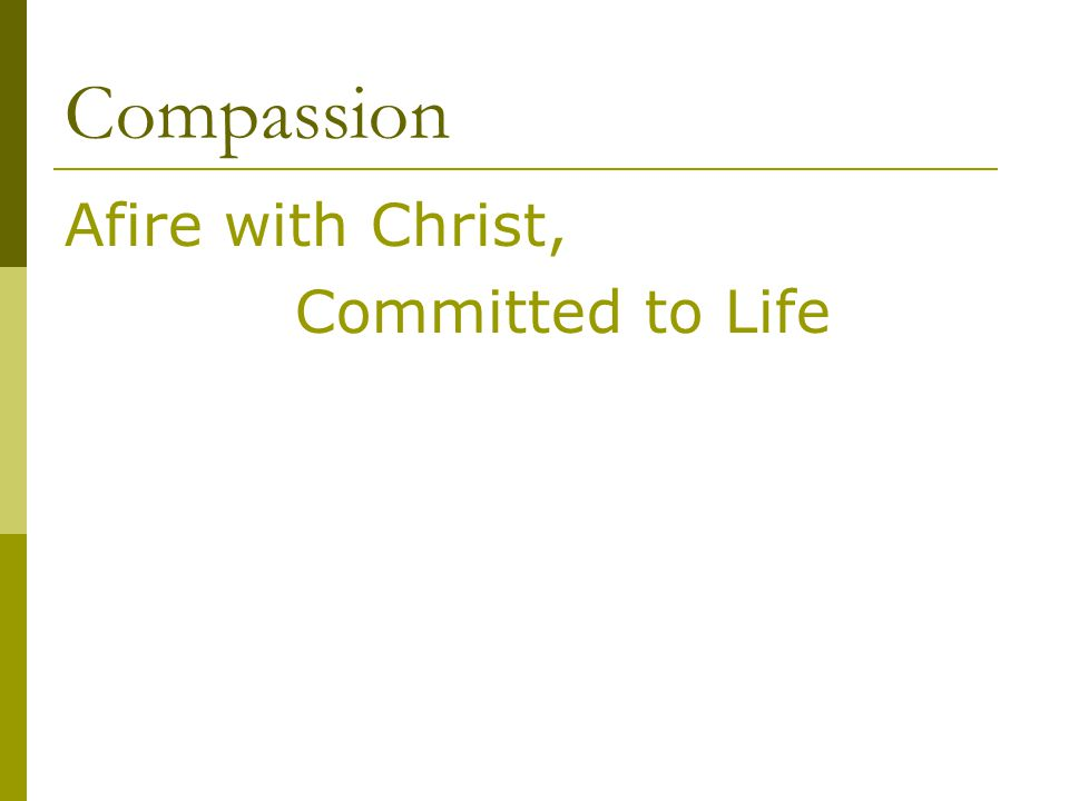 Compassion Afire with Christ, Committed to Life