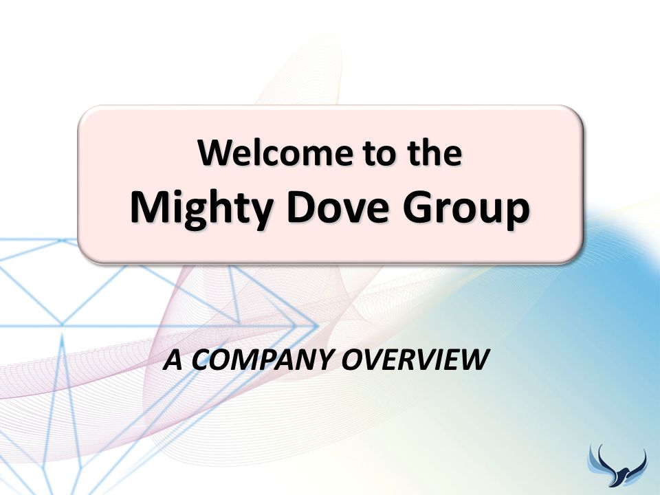 Welcome to the Mighty Dove Group A COMPANY OVERVIEW